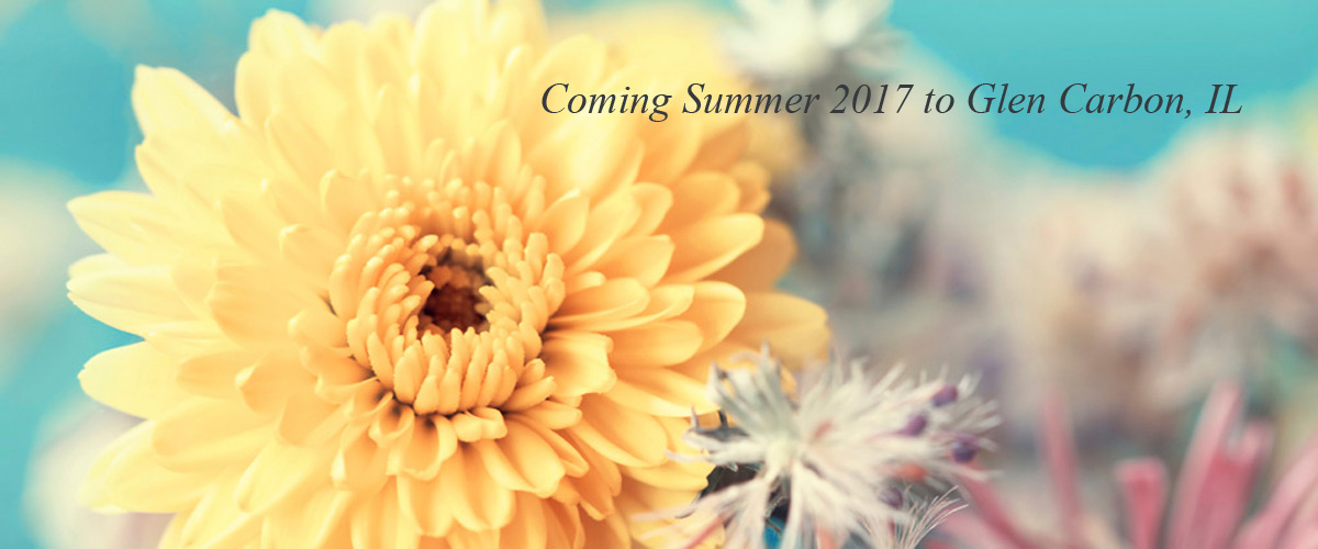 Coming Summer 2017 Glen Carbon, IL San Gabriel Memory Care